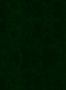 Verde Palude